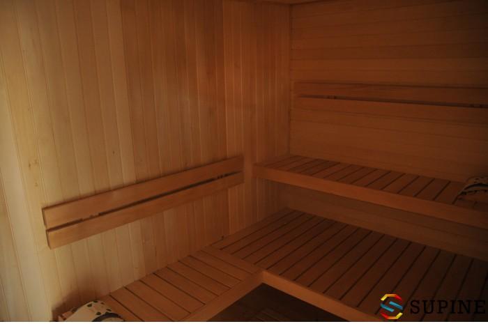 Sauna ogrodowa z drewna Noah